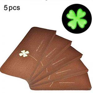 Paquet de 5 Tapis Lumineux Tapis Escalier Tapis Mats Auto-Adhésif Sans Colle PVC Antidérapant Plancher Escalier Protecteur Tapis de la marque Fdit image 0 produit