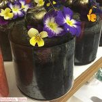 TIERRAFILM Rubans de Rhodoïd Pâtissier pour Les Gâteaux Le Diamètre jusqu'à 30 cm - Transparent Acétate Rhodoïd – 10 Bandes (8cm x 1m) de la marque TIERRAFILM image 3 produit